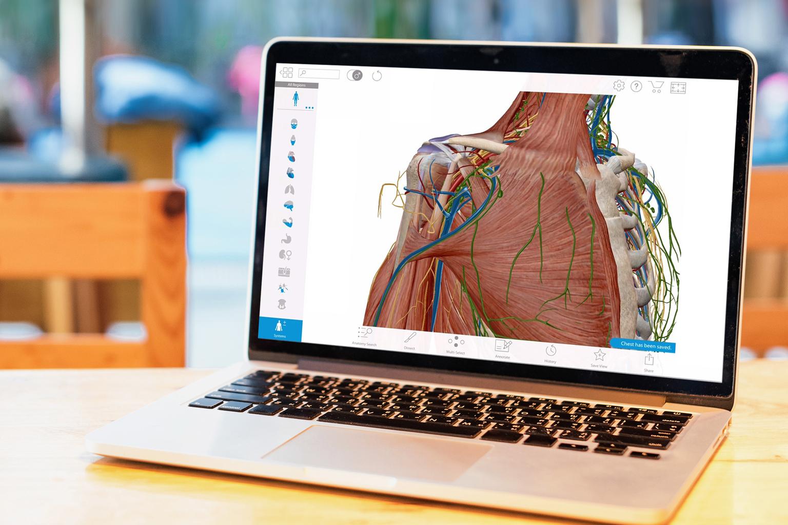 Visible body program open on laptop