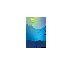 logo TIQ