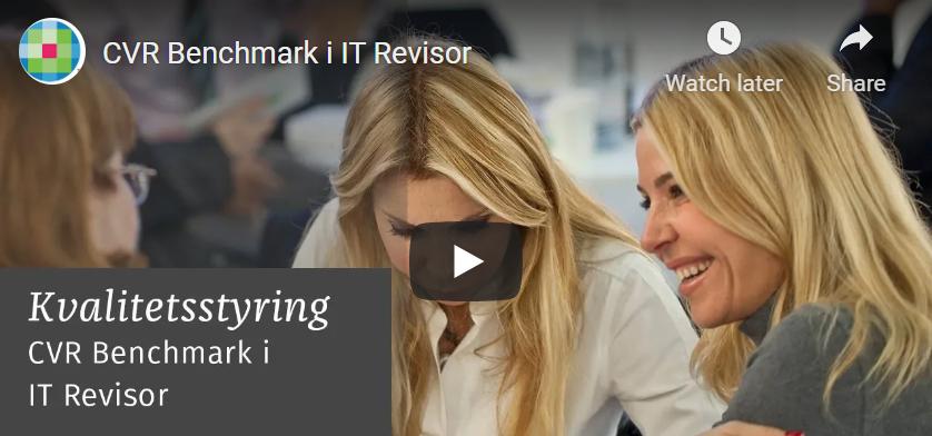 CVR Benchmark i IT Revisor
