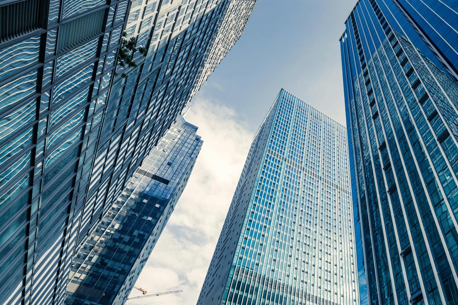Business Identity Theft: Understanding the Basics