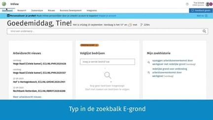 Screenshot InView Zaakessentie