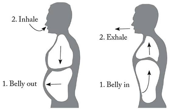 Illustration of proper breathing technique