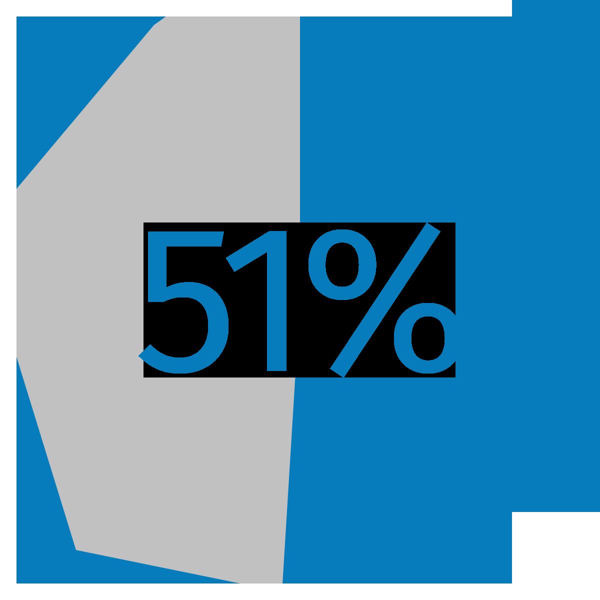 Percentage pie showing 51%