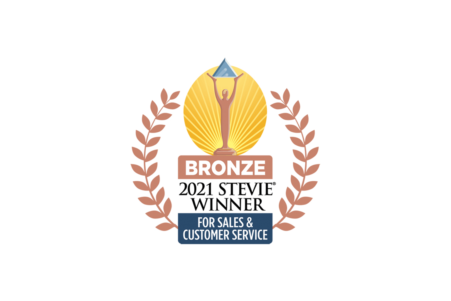 2020 Bronze Stevie - Sales and Customer Service