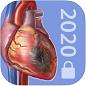 Visible Body Physiology & Pathology tile