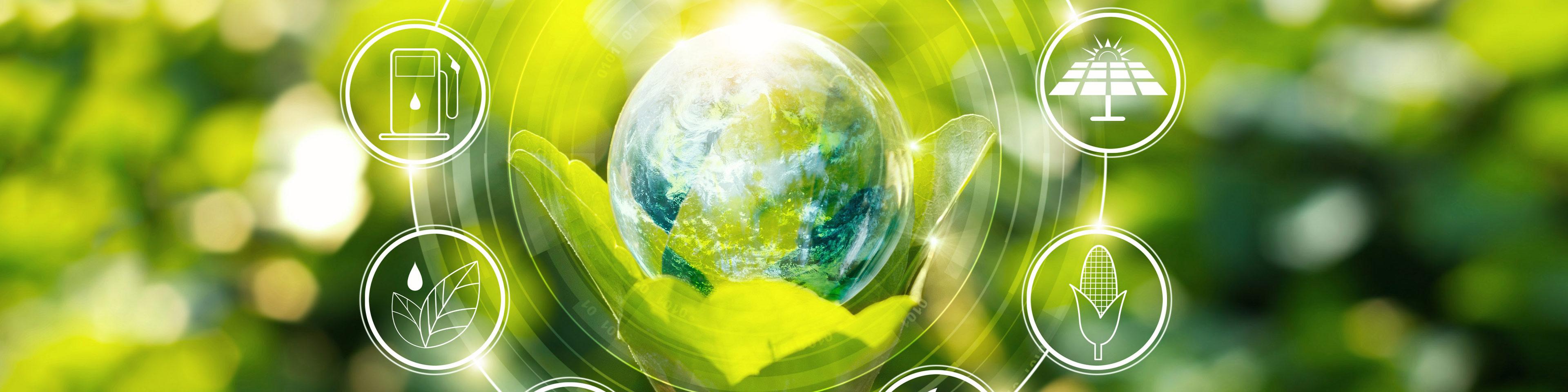 Gestire il rischio ambientale in azienda: cosa significa e perché è un vantaggio