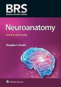 BRS Neuroanatomy book cover