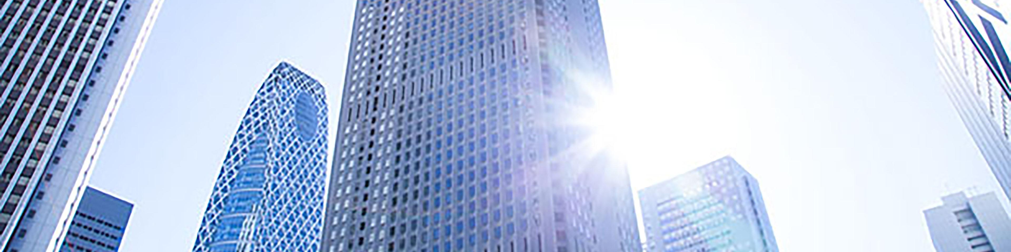 Business Entities Dissolution Reinstatement