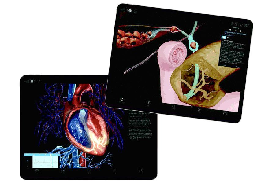 Thumbnail of Visible Body Physiology & Pathology on tablet screens