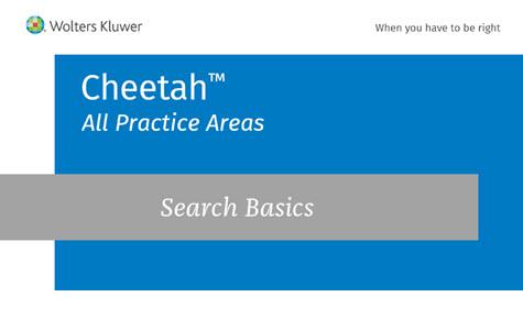 Search Basics