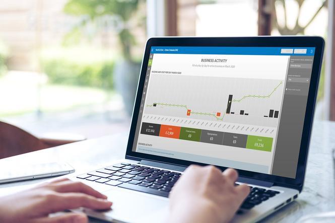 Finsit Cloud Financial Insights - Business Activity