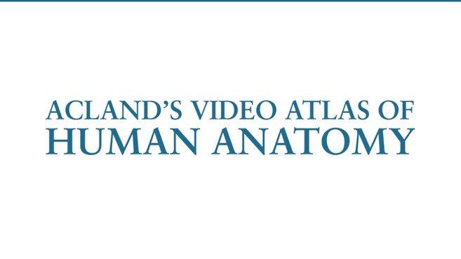 Acland's Video Atlas of Human Anatomy