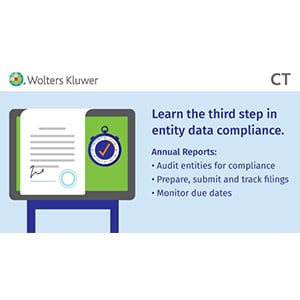 Mastering Entity Data Compliance: Annual Report Requirements