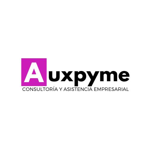 auxpyme logo