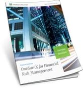 Financial Risk Management Overview Brochure