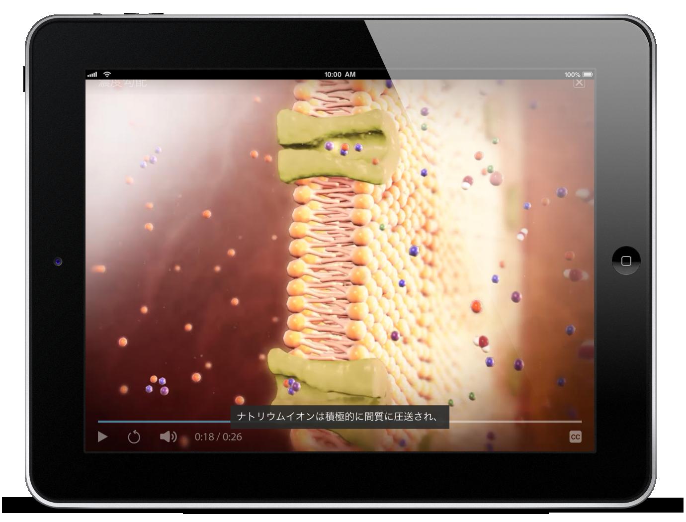 Thumbnail of Visible Body Physiology & Pathology animation