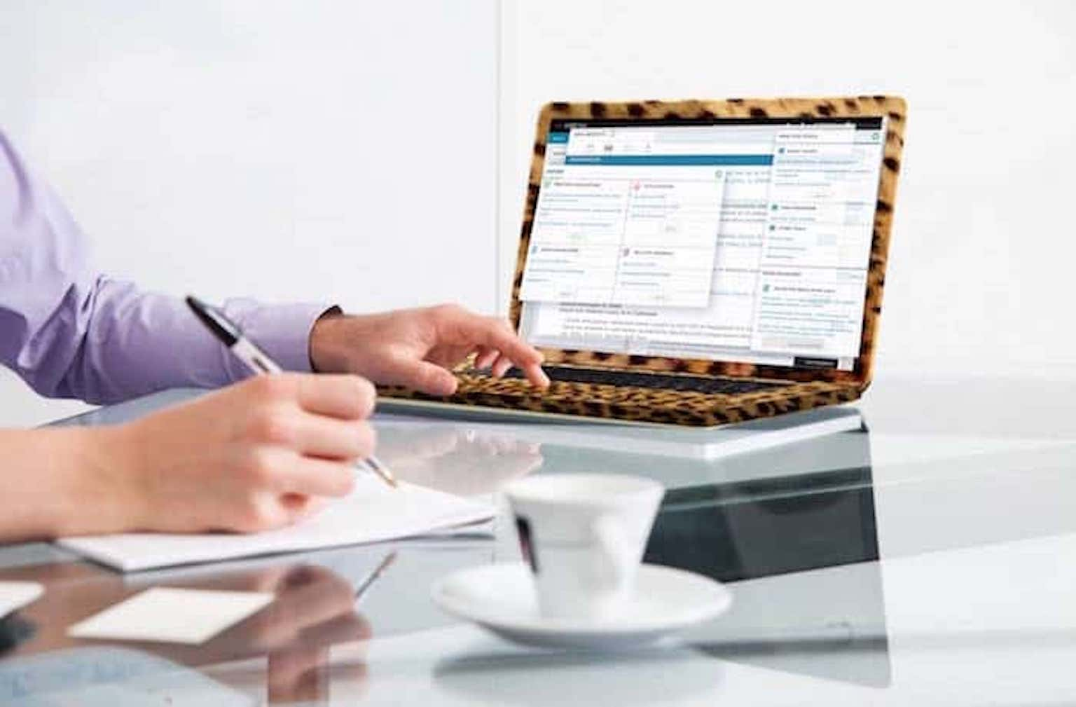 Cheetah_laptop
