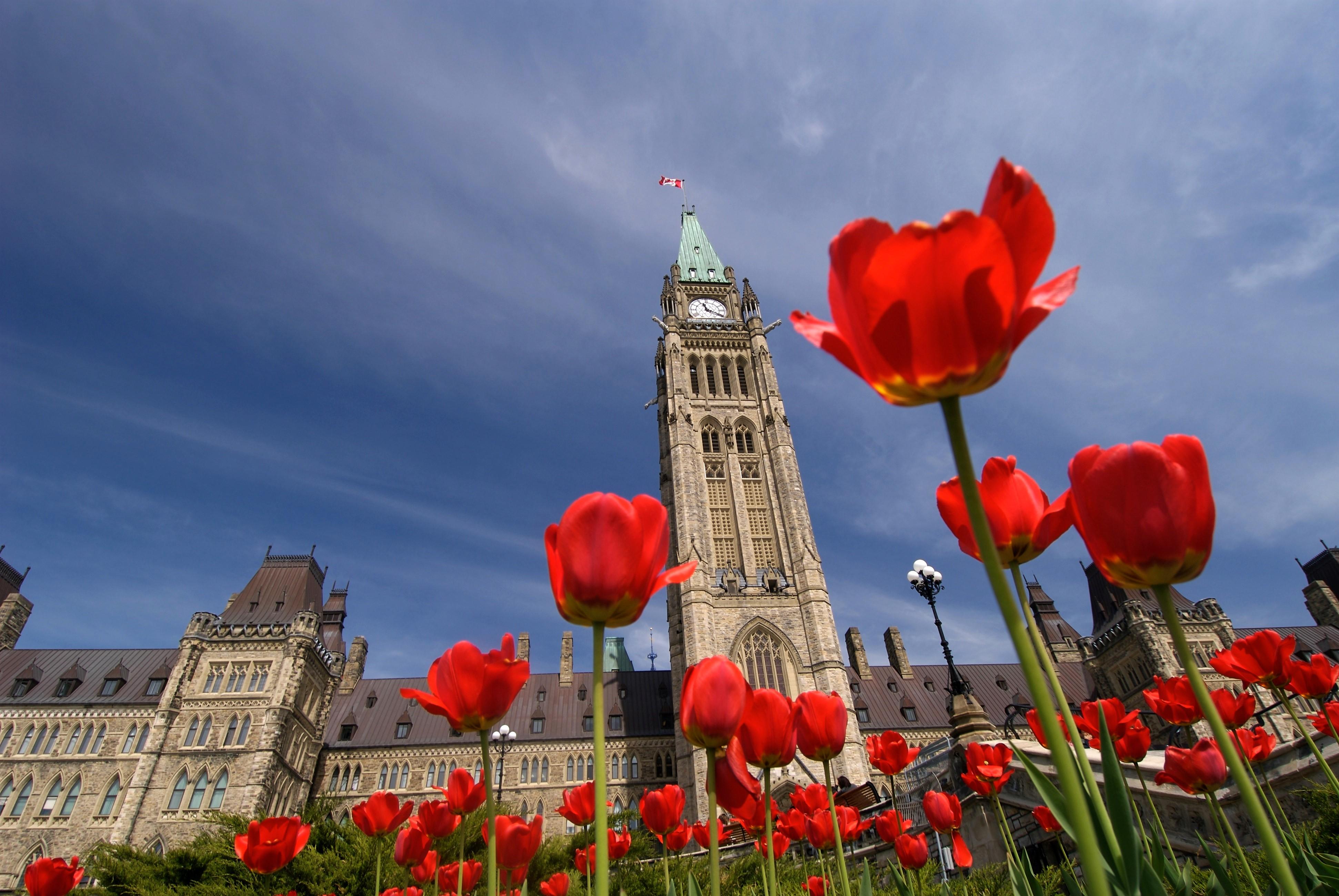 2020 Ontario Budget Tax Update