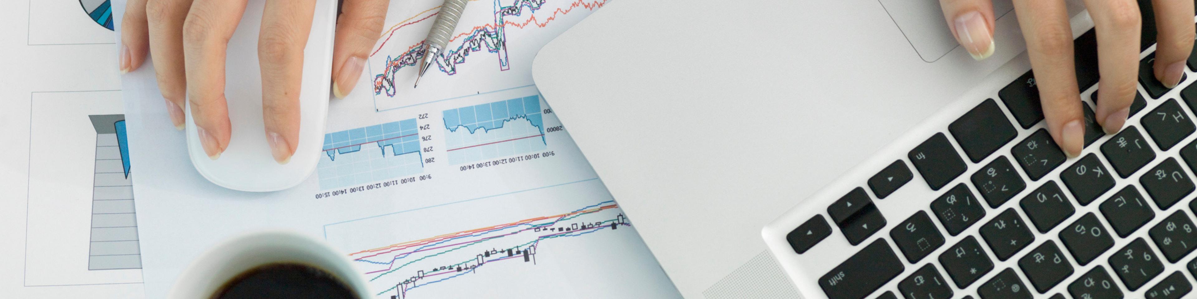 Hero tax software solution produce a full tax balance sheet