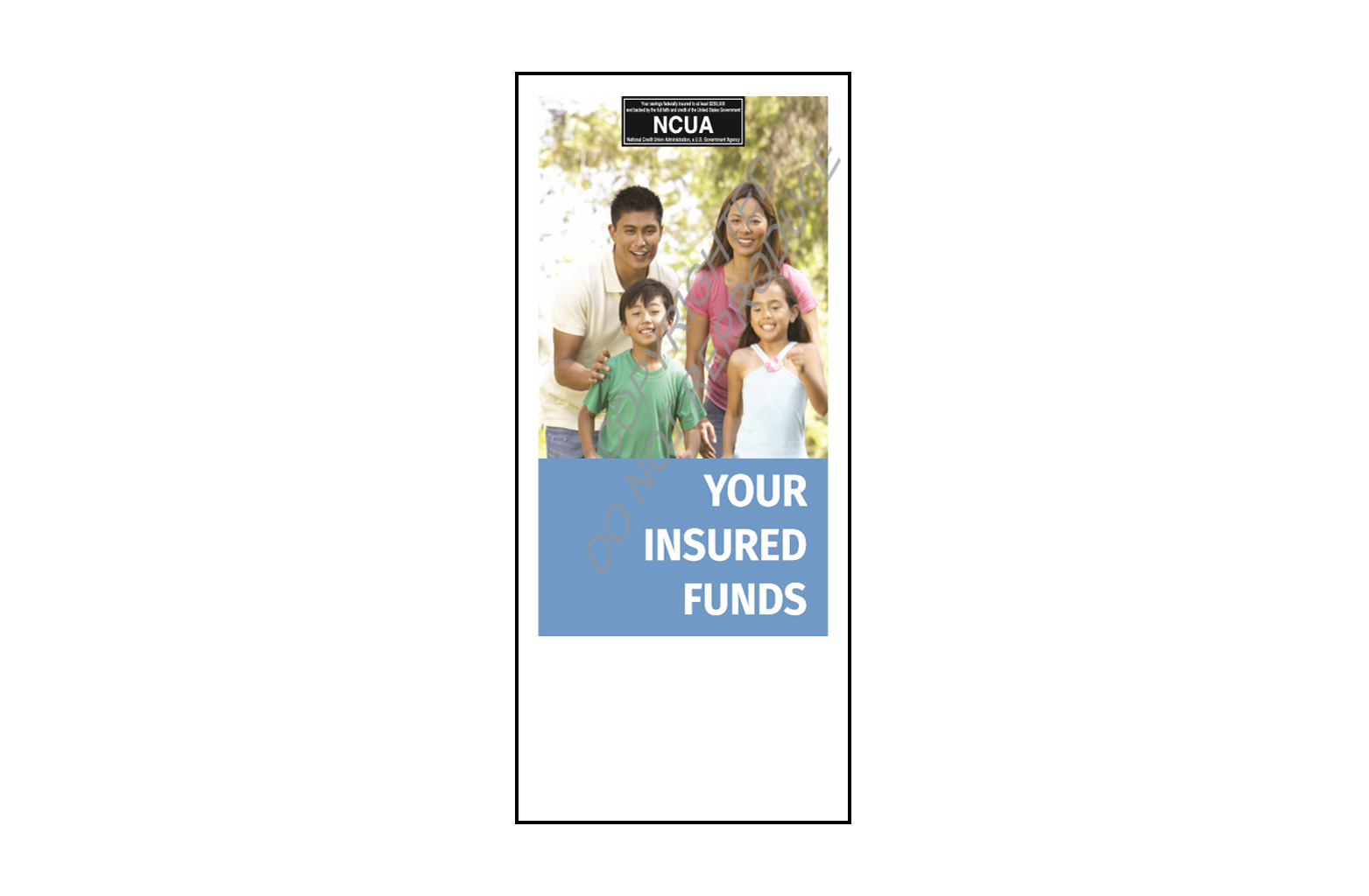 National Credit Union Association Your Share Insurance Brochure