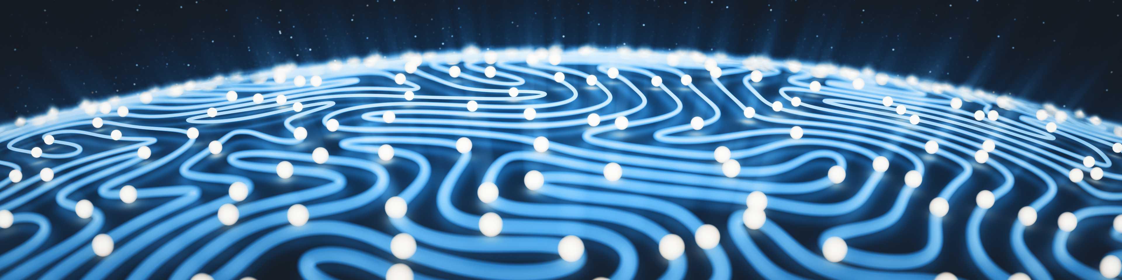 Digital brain texture