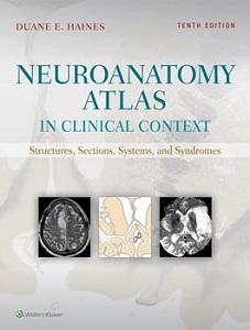 Neuroanatomy Atlas in Clinical Context book cover