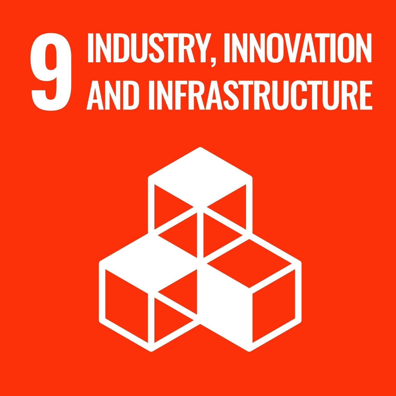 SDG 9