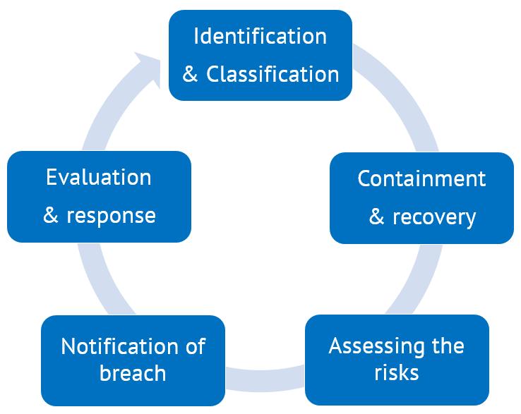 data-breach-management-steps
