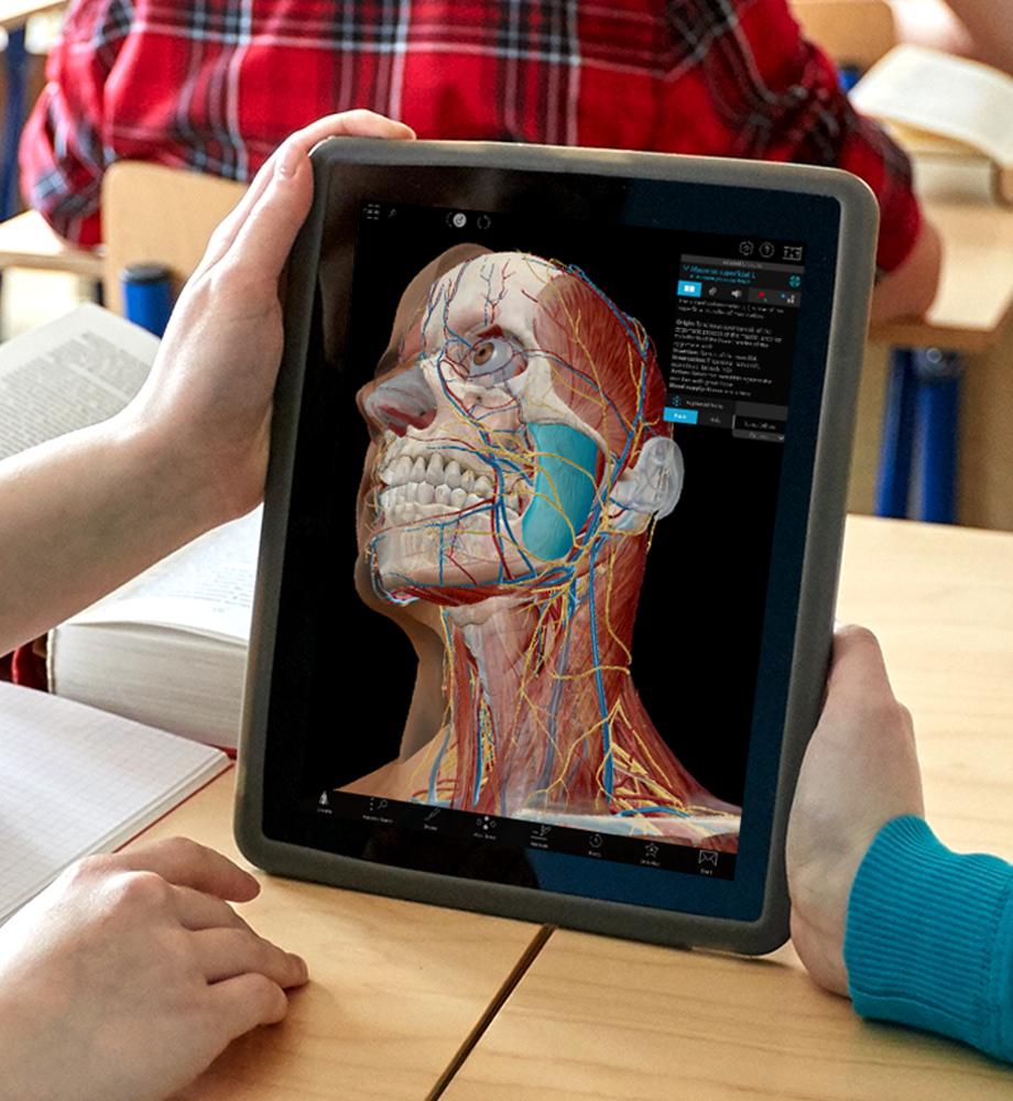 Anatomical model on a tablet