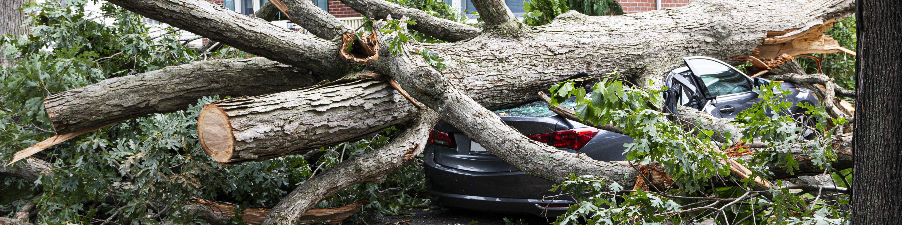 IRS announces tax relief for New Jersey victims of Hurricane Ida remnants: IRA and HSA deadlines postponed